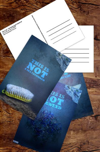 Postkarten | This is not... | Plakatkampagne gegen Plastikmüll im Meer von Benjamin Petersen